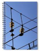 Glass Insulator 1 Spiral Notebook