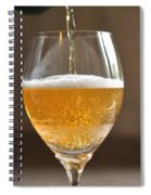 Glass Of Lager Spiral Notebook