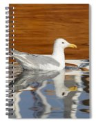 Glaucous-winged Gull Spiral Notebook