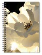 Gleaming White Spiral Notebook
