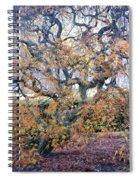 Glen Park Manor Garden Spiral Notebook