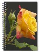 Glenn's Rose Spiral Notebook