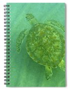 Gliding Green Spiral Notebook