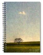 Glimmer Spiral Notebook