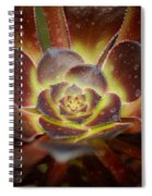 Glistening Glowing Garden Jewel Spiral Notebook