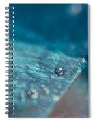 Glistening In The Sun 2  Spiral Notebook