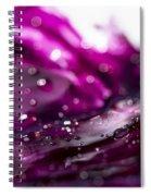Glistening In The Sun 3  Spiral Notebook