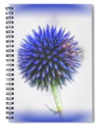 Globe Thistle With Vignette Spiral Notebook