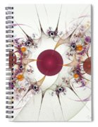 Globes Of Many Spiral Notebook