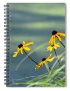 Gloriosa Daisies Spiral Notebook