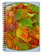 Glorious Autumn Leaves Spiral Notebook
