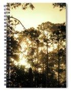Glorious Dawn Spiral Notebook