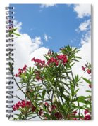 Glorious Fragrant Oleanders Reaching For The Sky Spiral Notebook