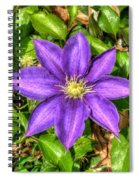 Glorious Glowing Clematis Spiral Notebook