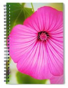 Glorious In Pink Spiral Notebook