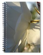 Glorious Mood Spiral Notebook