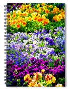 Glorious Pansies Spiral Notebook