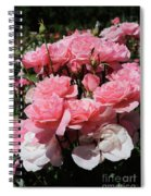 Glorious Pink Roses Spiral Notebook