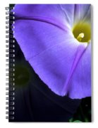 Glory In The Morning Spiral Notebook