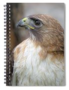 Glory Of It Spiral Notebook