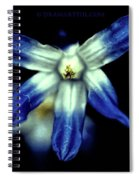 Glory Of The Snow Blue Giant Spiral Notebook