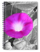 Glory Pink Spiral Notebook