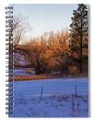 Glowing Cottonwoods Spiral Notebook
