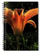 Glowing Day Lily Spiral Notebook