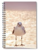 Glowing Day Spiral Notebook