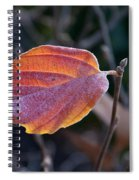 Glowing Leaf Spiral Notebook