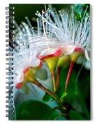 Glowing Needles Spiral Notebook