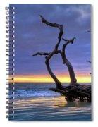 Glowing Sands At Driftwood Beach Spiral Notebook