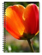 Glowing Tulip Spiral Notebook