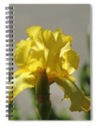 Glowing Yellow Iris Spiral Notebook