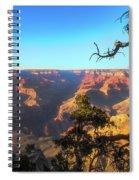 Gnarled Juniper On Canyon Rim Spiral Notebook