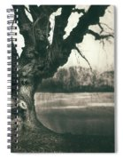 Gnarled Old Tree Spiral Notebook