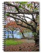 Gnarly Trees Of South Hilo Bay - Hawaii Spiral Notebook
