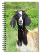 Goat Dental Floss Spiral Notebook