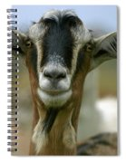 Goat Spiral Notebook