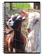 Goats Spiral Notebook