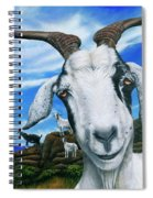 Goats Of St. Martin Spiral Notebook