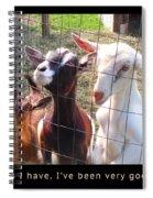 Goats Poster Spiral Notebook