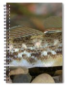 Goby Fish Spiral Notebook