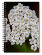 Gods Bridal Bouquet Spiral Notebook