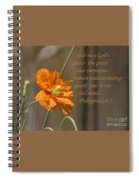 God's Peace Spiral Notebook