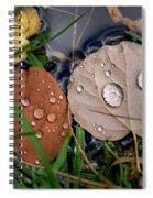 God's Tears Spiral Notebook