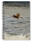 Bar Tailed Godwits Spiral Notebook