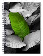 Going Green - Dreamy Spiral Notebook