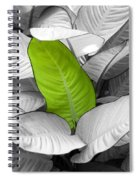 Going Green Lighter Spiral Notebook