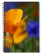 Going Solo  Spiral Notebook